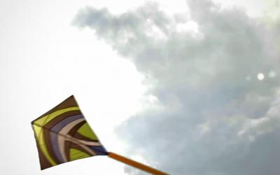 Drachen im Wind2 Kopie